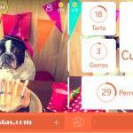Imagen Cumpleaños Perros | 94 por ciento