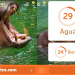 Imagen Hipopótamo Agua | 94 por ciento