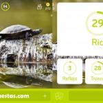 Imagen Tortugas Rio   94 por ciento